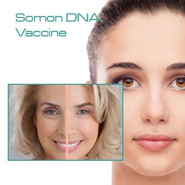 Antiaging Pi System Somon DNA Vaccine Mesotherapy Detail Information